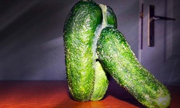hi big boy... | Rude Vegetables | Vegetables, Funny ...