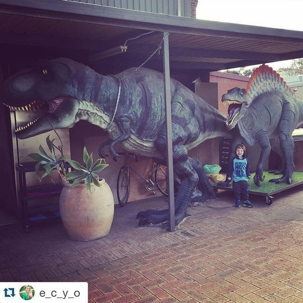 Make sure you see these dinosaurs in Perth & WA before they become extinct!