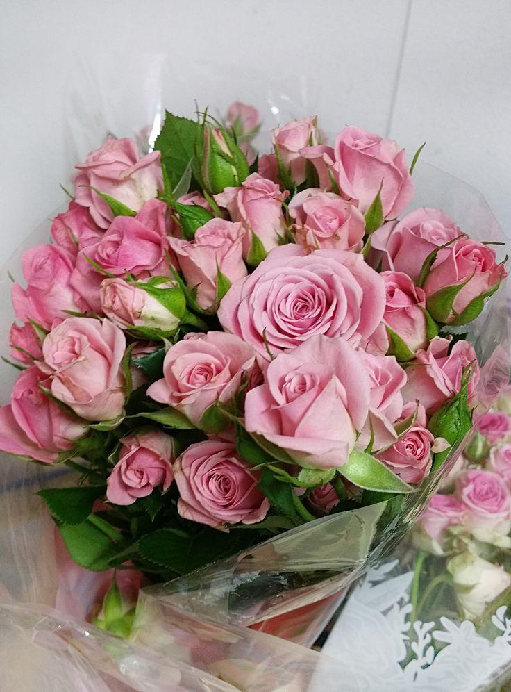 Prekrásne ružové ruže ODILIA #flowers #roses #pinkroses #beautifulflower #slovakia #kvetyexpres