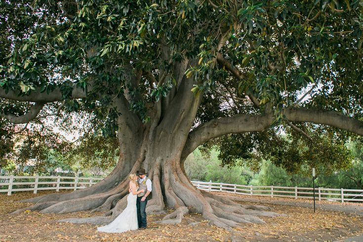 Camarillo Ranch House Wedding Photography – Jeannette + Mike » California & Destination Elopement Photographer