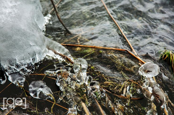 Frozen water drops in a lake side, Danish winter - Photograph by Qe-grafik