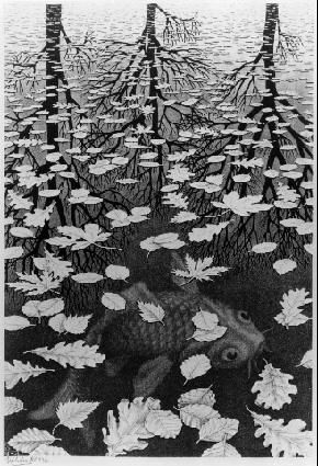 Three Worlds (M. C. Escher) (1.Trees reflected on water, 2. leaves on surface of water, 3. Fish underwater)