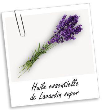Huile essentielle Lavandin super BIO Aroma-Zone : décontractante, anti-inflammatoire, antiseptique, cicatrisante.