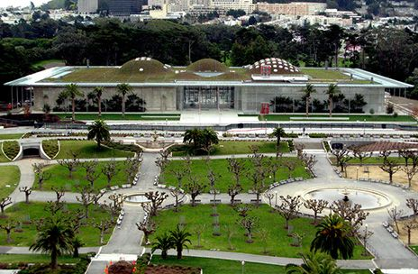 Engage your mind with a trip to the California Academy of Sciences, a world-class scientific and cultural institution.  #Berkeley  #BerkeleyAttractions