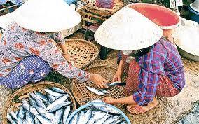 Vietnam - Google Search