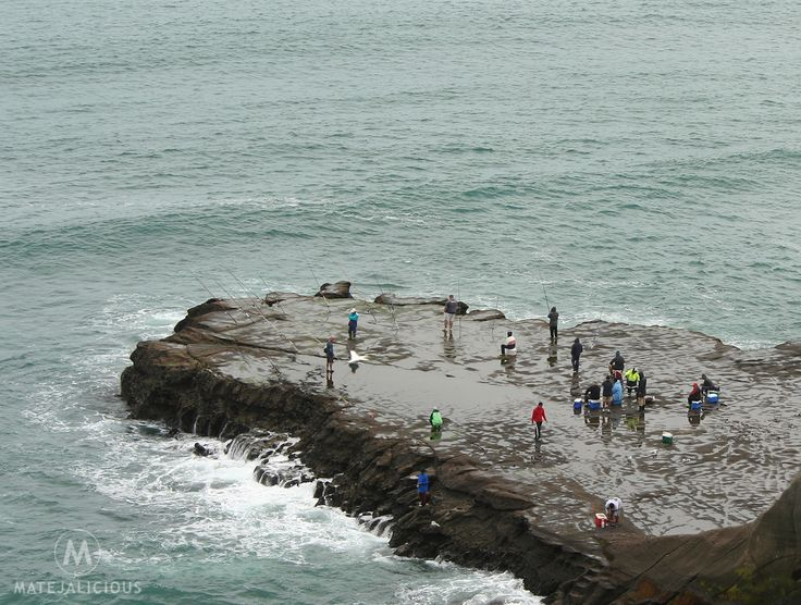 Muriwai Beach Fishing - Matejalicious Travel and Adventure