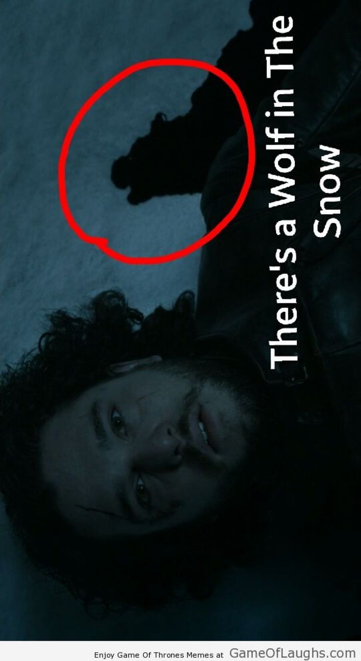 There was a wolf with Jon Snow in the end