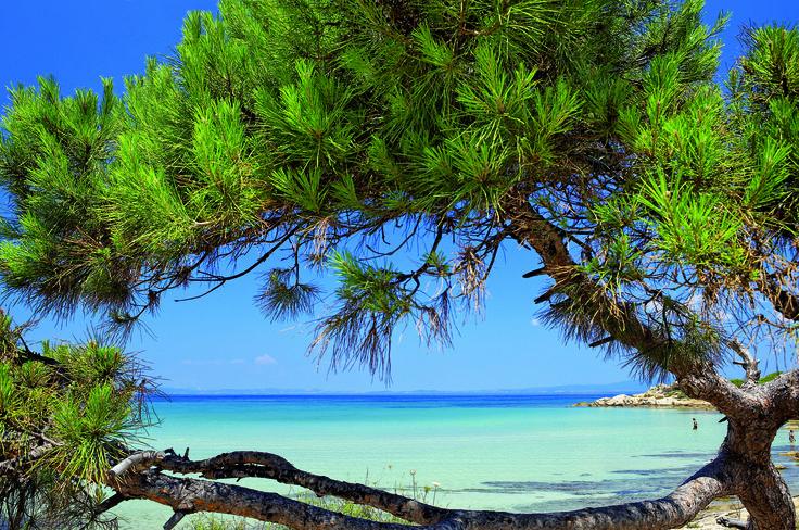 Kavourotrypes beach - Halkidiki - Greece