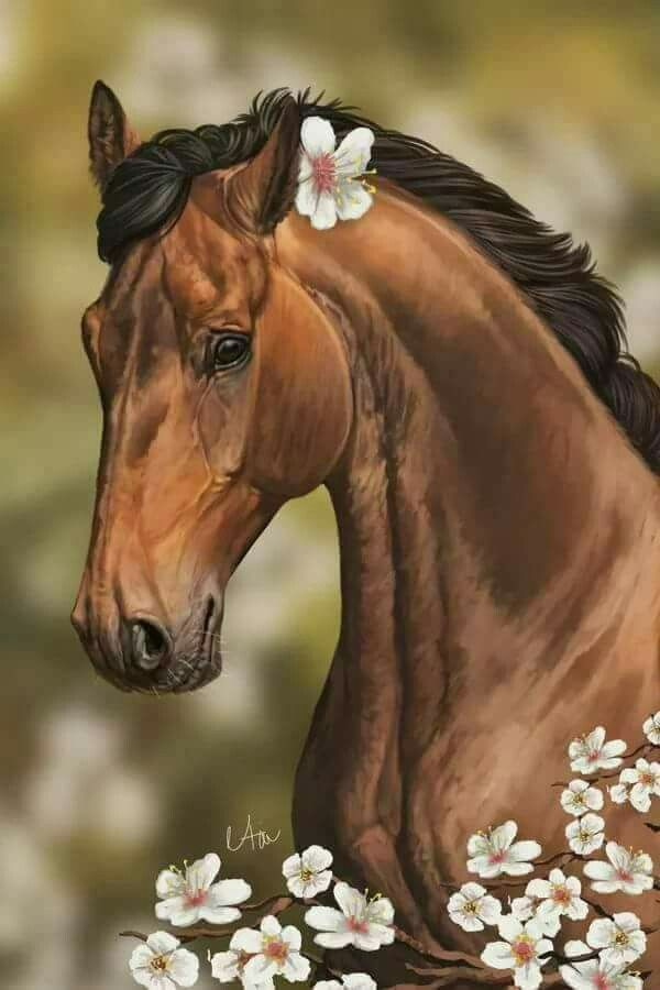 Лошадь открытка, телефон картинки