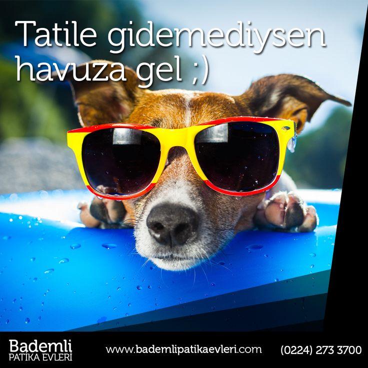 Daha tatile gidemedin diye üzülme, Bademli Patika Evlerinde çok güzel bir havuz var.  #bursa #bademli #ev #villa #müstakil #daire #yatırım #hayat #site #havuz #tatil  Bademli Mah. Eski Mudanya Cad. No:175 Mudanya / BURSA www.bademlipatikaevleri.com // (0224) 273 3700