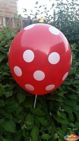 Rode ballon met witte stippen 30 cm hoge kwaliteit - ballonnenparade
