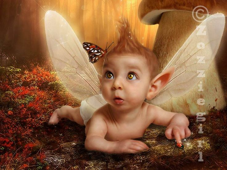 Cute Baby Fairies: 153 Best Images About Fairy's And Elves On Pinterest