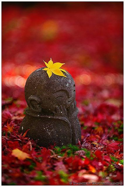 Autumn in children Jizo at Enko-ji Temple, Kyoto, Japan LYNN we have got to find Jizo statues for our gardens :):) xoxoxox
