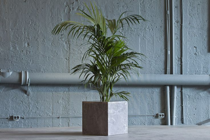 Flower pot made of greek stone.. palm trees, stone flower pot..