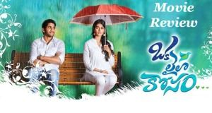 """Naga Chaitanya came with another Romantic-Entertainer """"Oka Laila Kosam"""" after he scored a hit with Manam and a flop with Autonagar Surya. In his four years of film Career, he always choosed different subject films, starting from his first film to his previous film....."""