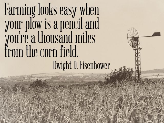 farming looks easy when your plow is a pencil + you're a thousand miles from the corn field. -Dwight D. Eisenhower