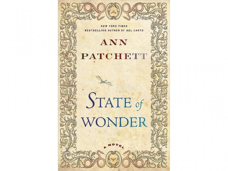 state of wonder ann patchet essay Mary ann cappiello assistant professor,  state an opinion or preference about the topic or book  a book of science and wonder by walter wick (1997.