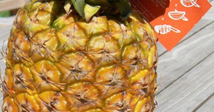Como fazer fatias de abacaxi caramelizadas. Esta técnica dá muito sabor a um abacaxi fresco. Existem muitos usos para abacaxi caramelizado. Eles são fantásticos como base para bolas de sorvete de baunilha, ou como um acompanhamento de sorbet ou doces. Tente colocá-los em camadas com pedaços finos de bolo, usá-los em um bolo ou torta de frutas ou como cobertura para cheesecake. Um abacaxi ...