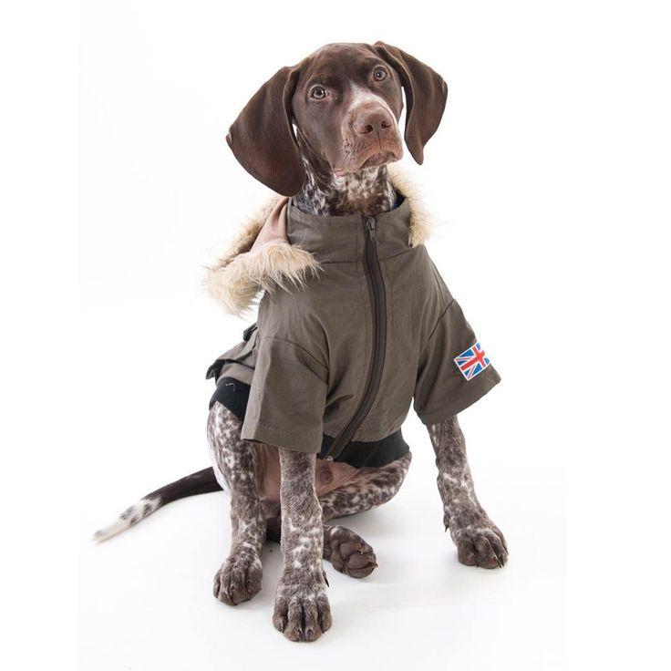 Military Dog Coat £34.99 #dogcoat #dogclothing