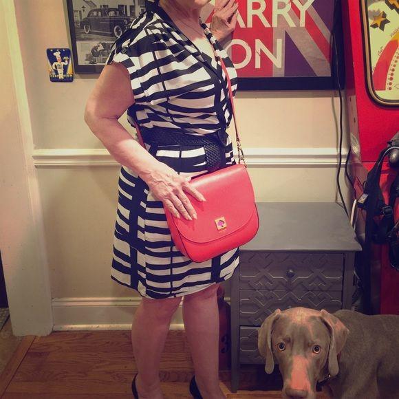 Crimson Coast Dress Crimson Coast blk/wht lightweight dress. (Belt & dog not included ) Crimson Coast Dresses
