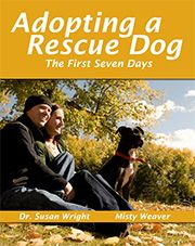 Free guide for adopting a rescue dog (the best dogs!)