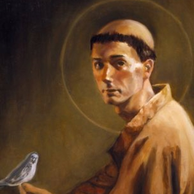 44 best images about francis of assisi patron of animals on