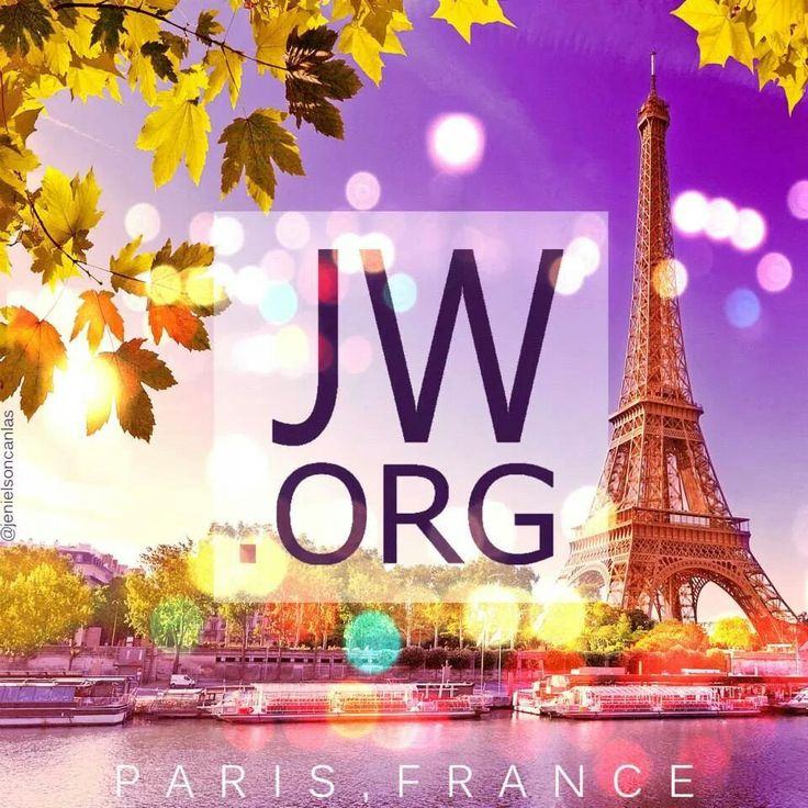 Jehovah's Witnesses—Official Website