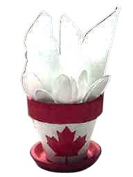 Canada Day Party Pot for holding utencils or other supplies OR holding treats OR mini ones for Name Holder Place Setting OR take home Party Favor Holder