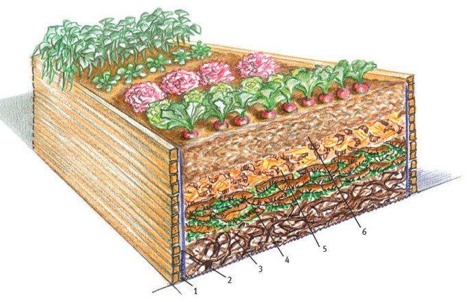 Gemüse-Hochbeete: Schicht für Schicht richtig angelegt - Trend Hochbeet: Tipps fürs Anlegen & die Gemüseaufzucht