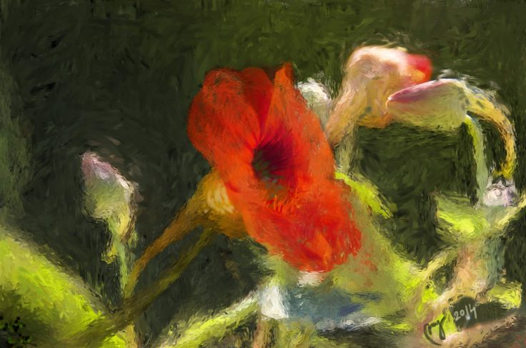 """Fire flower"", digital painting"