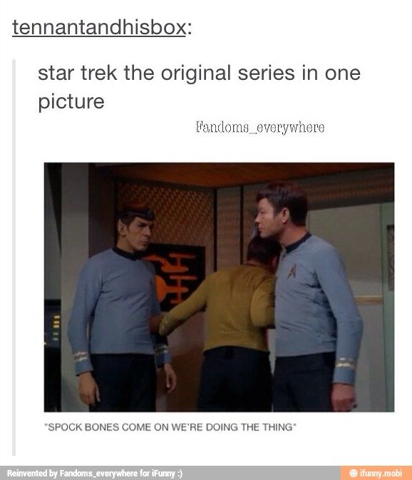 """""""I highly recommend not doing the thing, Captain."""" """"dammit jim"""""""
