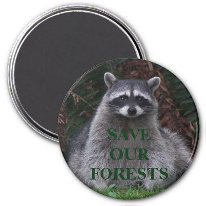 Forest Conservation Raccoon Photo Magnet - animal gift ideas animals and pets diy customize