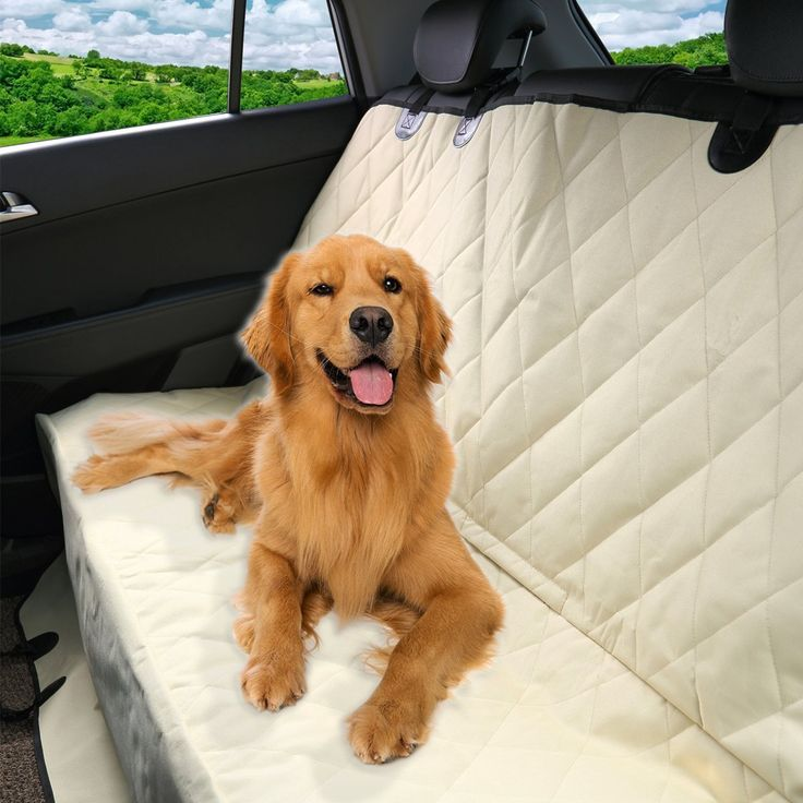 1000 ideas about seat covers for dogs on pinterest pet car seat pet dogs and dog car seat covers. Black Bedroom Furniture Sets. Home Design Ideas