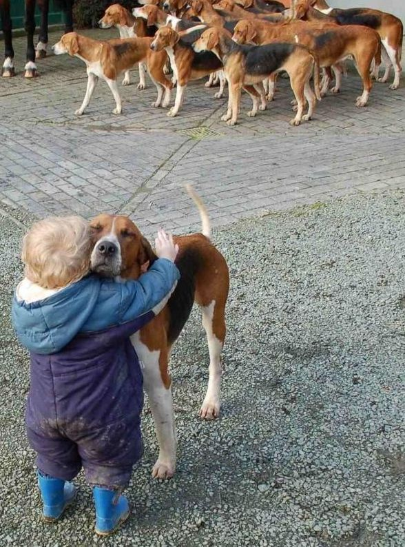 Follow your heart, not everyone else. (look at the love on that dog's face)!