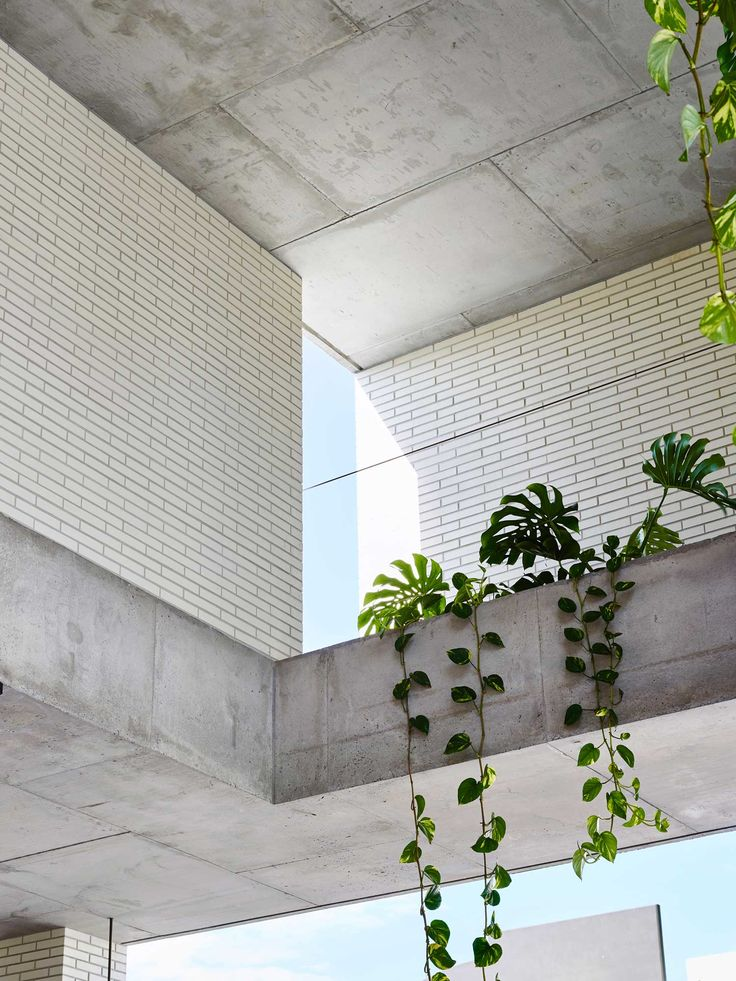 Wandoo Street by Richards & Spence | http://www.yellowtrace.com.au/interview-richards-spence/