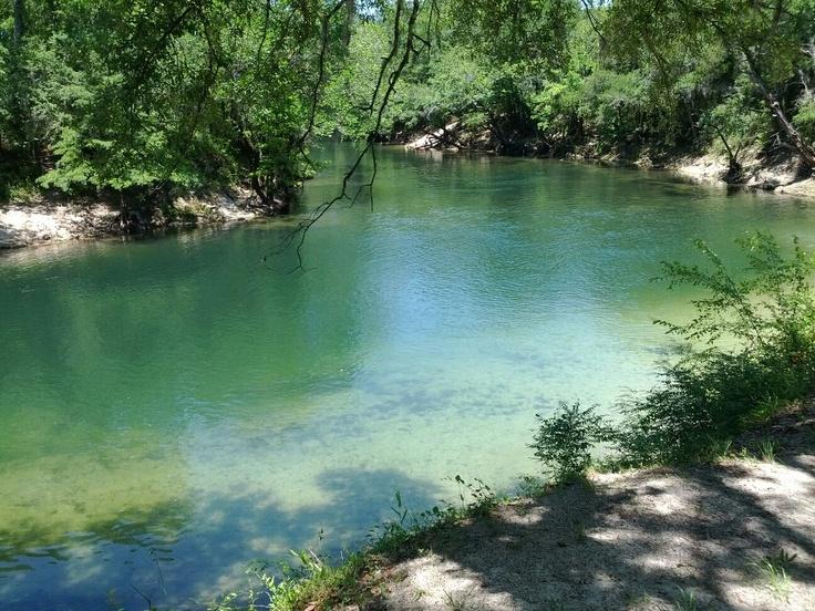Best ALTHA FLORIDA HOME Images On Pinterest Florida River - Florida rivers