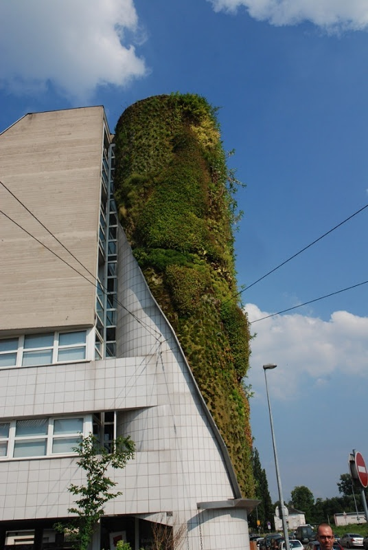 I need a guide: vertical garden by patrick blanc