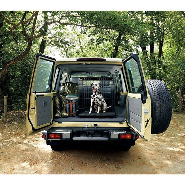 """@motostew4x4association's photo: """"Does your dog come along when you go #offroad? #getoutside"""""""