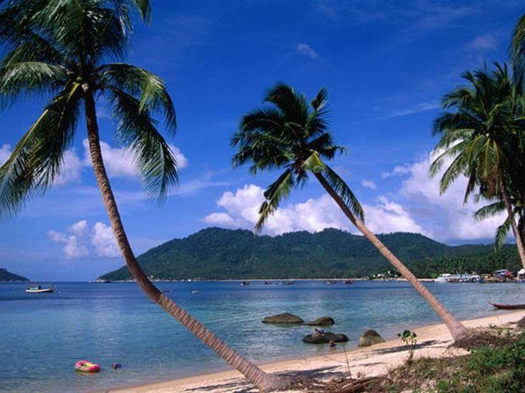 Κο Τάο-Το νησί Κο Τάο με τις αμέτρητες φοινικιές, που «πλέει» γαλήνια στον Κόλπο της Ταϊλάνδης, πήρε το όνομά του από τις πολυάριθμες θαλάσσιες χελώνες που κατοικούν στις ακτές του.