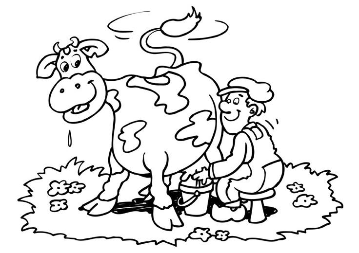l kleurplaat boer koe jpg 842 215 595 boerderijdieren koe