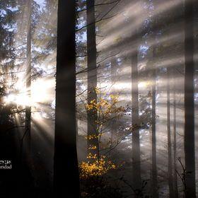 Photo Luz en la oscuridad by Jabi Artaraz on 500px
