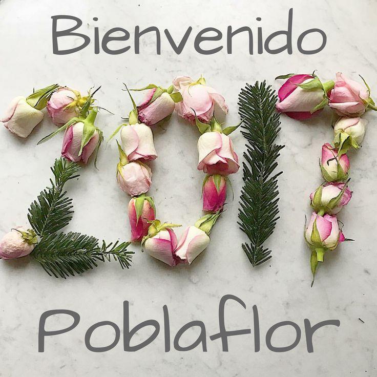 Comienzo de año y nuevos propósitos que cumplir... El nuestro es ofreceros bellas #flores, bonitas #plantas y una gran variedad de #decoracion. www.poblaflor.com #TiendasPoblaflor #Poblaflor #FloresFrescas #FloresValencia #FloresNaturales #PlantasNaturales #Deco #Home #DecoHome #DecoValencia #Valencia #CampDelTuria #PoblaDeVallbona #Betera #RamosDeNovia #Bodas #Bodas2017 #RamosDeFlores #CentrosDeFlor #PoblaflorBodas #BodasValencia #BodasValencia2017 #FloristeriaValencia