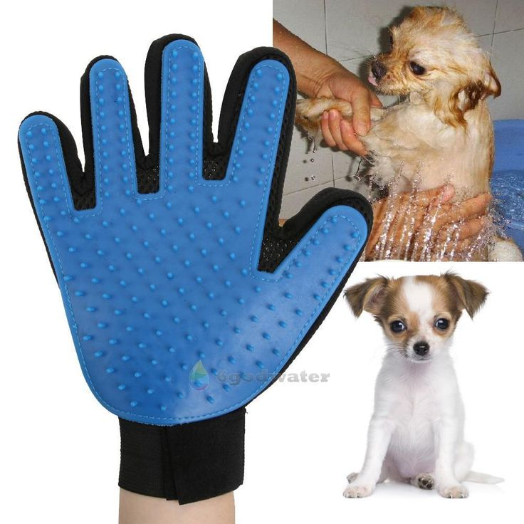 Rugs That Dog Hair Won T Stick To: 25+ Best Ideas About Dog Hair Removal On Pinterest