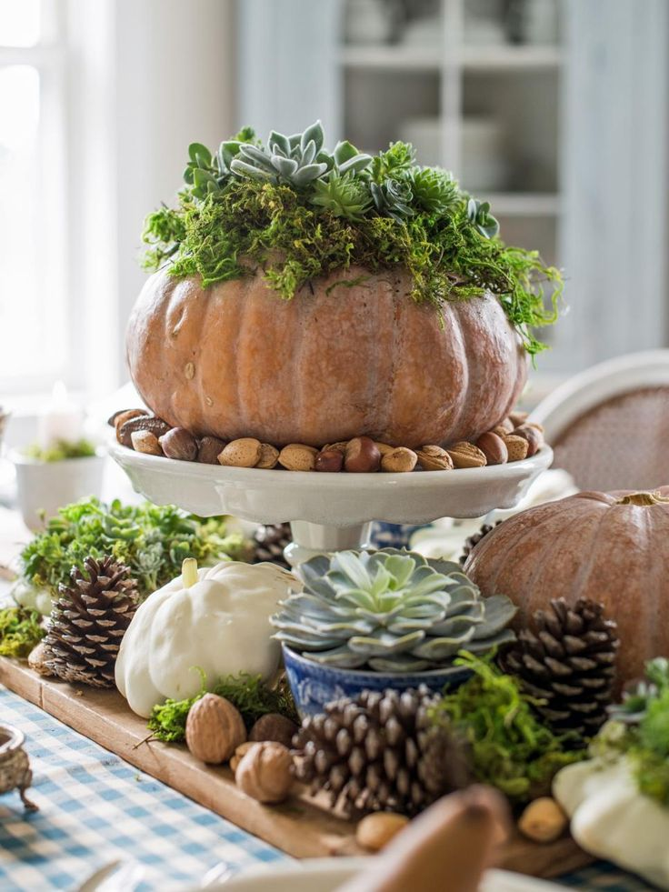 In just a few steps, you can transform a faux or fresh pumpkin into a rustic planter for assorted succulents. Surrounded by other fall elements, this garden craft makes a charming, living centerpiece for your fall or Thanksgiving table.