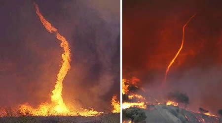 A fire whirl is a rare phenomenon in which a fire, under certain conditions, depending on air temperature and currents, acquires a vertical vorticity and forms a whirl, or a tornado-like effect of a vertically oriented rotating column of air.