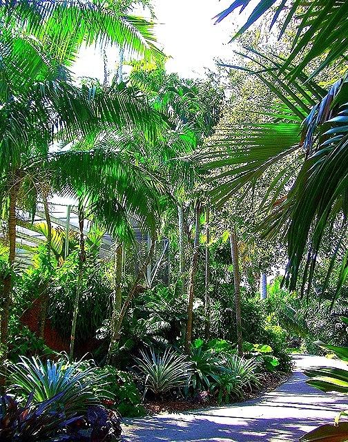 Fairchild Tropical Botanic Garden In Miami Florida