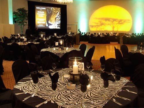 Safari theme decor event gallery portland event for African party decoration ideas