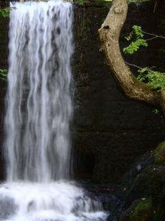 papel-de-parede-animado-celular-waterfall.gif (240×320)