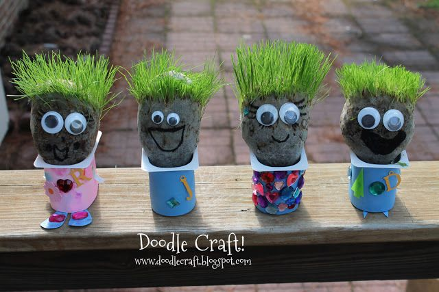 DIY Chia pets using old nylons, grass seed, potting soil and a yogurt container.