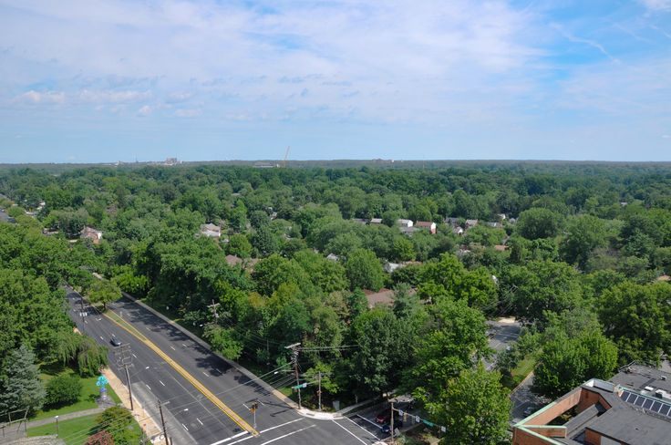 The Point At Silver Spring Apartments Md Roof Top View Ow Ly Zrqyx Rooftop Treetops Apartmentbuilding Newapartments Silversp Tree Tops Top View Rooftop